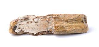 Окаменелая древесина изолированная на белой предпосылке Стоковое Изображение
