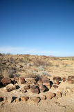 Окаменелые ствол дерева и пустыня в Намибии стоковое изображение