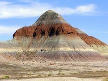 Окаменелый ландшафт национального парка леса, Аризона, США стоковое изображение rf