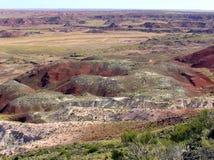 Окаменелый ландшафт национального парка леса, Аризона, США стоковая фотография