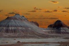 Окаменелый лес Аризона Стоковая Фотография RF