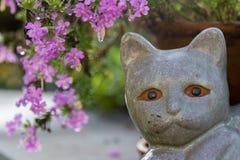 Окаменелый кот Стоковая Фотография