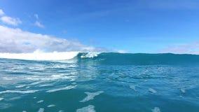 Океанская волна катания серфера сток-видео