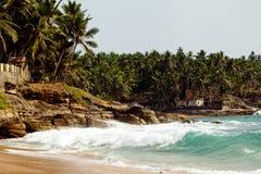 Океанская волна с скалистыми скалами и пальмами Стоковые Изображения