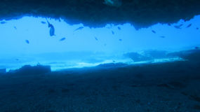 Океанская пещера стоковые изображения rf