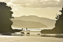 Океанский пляж в ярком backlight Стоковые Фотографии RF