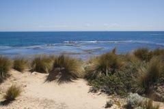 океан дюны Стоковая Фотография