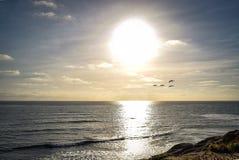 Океан и пеликаны на скалах захода солнца в Сан-Диего, Калифорнии стоковая фотография