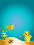 океан карточки Стоковое Изображение RF