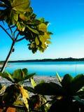океан мирный Стоковые Фото
