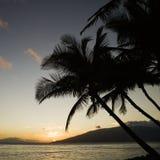 океан над Тихим океан заходом солнца Стоковые Изображения RF