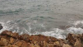 Океан новой жизни Стоковые Изображения