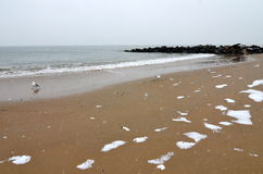 Океан от пляжа в зиме, Нью-Йорка Брайтона стоковые изображения rf