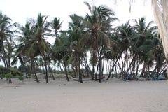 океан пляжа песочный стоковые фотографии rf