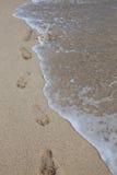 океан посылает Стоковое Фото