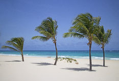 океан пляжа песочный Стоковое Изображение