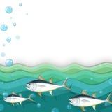 Океан с рыбами Стоковое Изображение RF