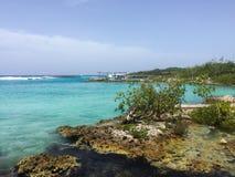 Океан с утесами в Кубе Стоковое Изображение RF