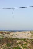 океан Стоковое Фото