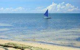 океан pacific стоковые фото