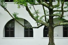 Окна великобританского дома колонии белые голубые стоковая фотография rf