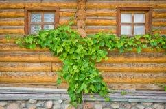 2 окна в деревянных рамках Стоковые Изображения