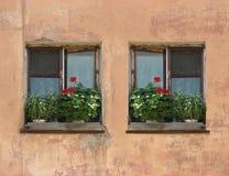 2 окна в старой стене Стоковое Изображение