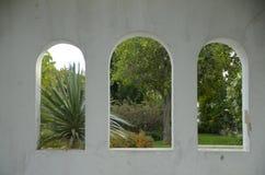 Окна дерева Стоковая Фотография