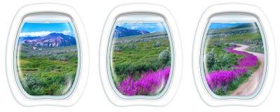 Окна иллюминатора на национальном парке Denali Стоковое Изображение RF