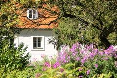 Окна коттеджа окруженные вегетацией. Польша Стоковые Фото
