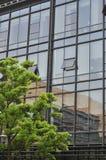 окна офиса дела зданий предпосылки Стоковая Фотография RF