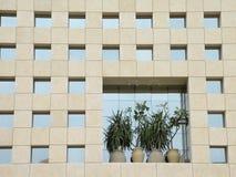 окна стены Стоковое Изображение RF