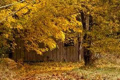Окно амбара с листьями Стоковое Изображение