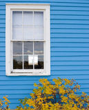 окно белизны рамки Стоковое фото RF