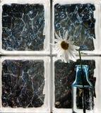 окно вазы цветка Стоковая Фотография RF