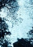 окно валов дня ненастное Стоковое Фото