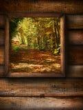 окно взгляда ландшафта падения Стоковое фото RF