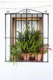 Окно в андалузских белых деревнях в Испании Стоковая Фотография RF