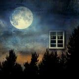 Окно в природу Стоковые Фотографии RF