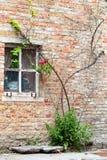 Окно в стене дома кирпича Стоковые Изображения
