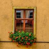 Окно в Jelenia Gora Стоковое Изображение RF