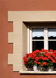 окно гераниумов самомоднейшее красное стоковая фотография