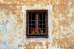 Окно года сбора винограда Sudtirol Стоковое Изображение RF