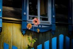 окно дома старое деревянное Стоковые Изображения
