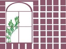 окно завода Стоковое Изображение