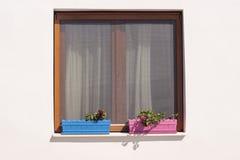 Окно и заводы стоковые фотографии rf