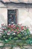 Окно и цветки, акварель Стоковые Изображения RF