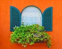 Окно и цветок стоковые фотографии rf