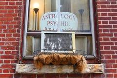 Окно квартиры астролога стоковые изображения rf