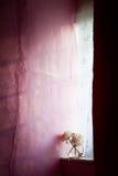 Окно коттеджа Стоковая Фотография